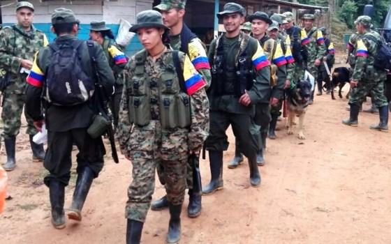 Imagem de aqruivo mostra guerrilheiros das Farc se dirigindo para zonas transitórias, onde ocorrem desarmamentos (Foto: HO/Prensa Bloque Sur FARC/AFP)