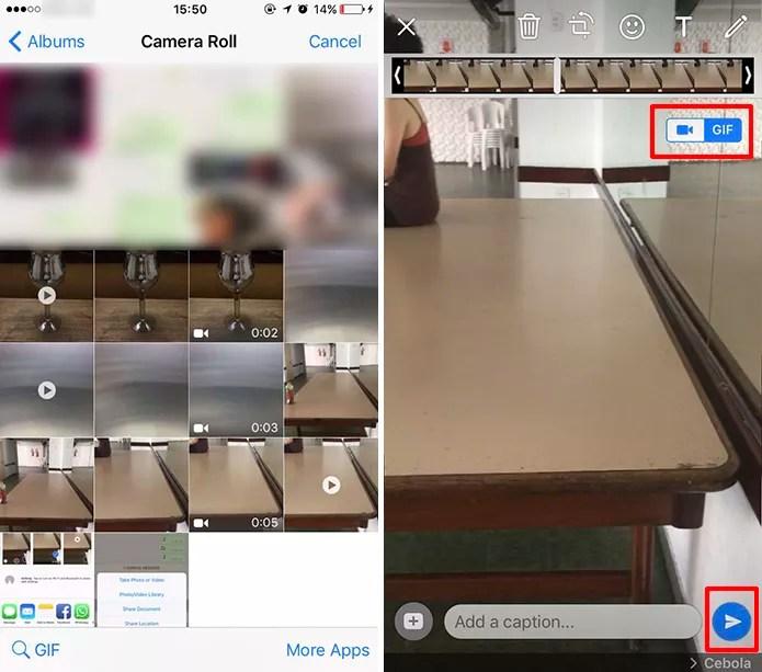 WhatsApp para iPhone mostra botão para converter vídeo para GIF (Foto: Reprodução/Elson de Souza)