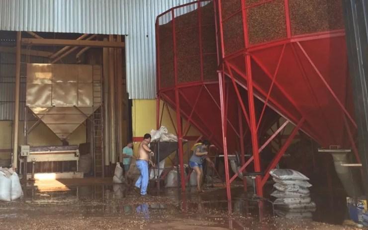 Fogo foi controlado na manhã deste domingo (7), em Sales (Foto: Graciela Andrade/TV TEM)