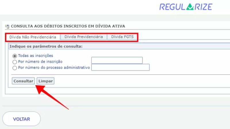 Consulte os diferentes tipos de dívida junto à União no portal Regularize — Foto: Reprodução/Paulo Alves