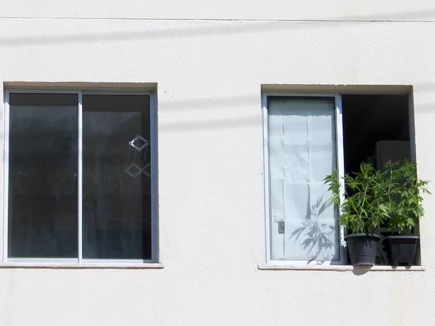 Universitário é preso depois que colocou dos pés de maconha na janela (Foto: Taisa Alencar / G1)
