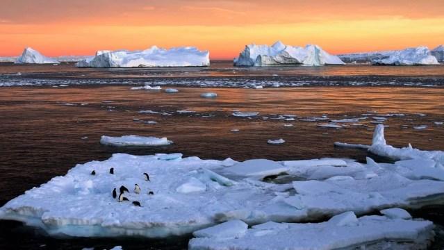 Lado leste do continente é a única região onde há registro de crescimento da camada de gelo (Foto: REUTERS)