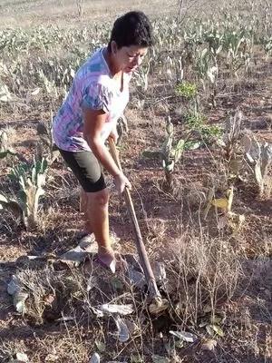 Criadora Adalzina Santos já não sabe mais o que fazer para evitar tantos prejuízos (Foto: Arquivo Pessoal)