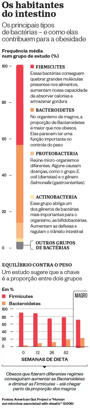 Os habitantes do intestino (Foto: época)