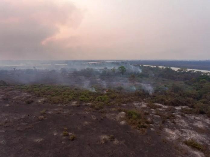 Bombeiros calcularam 35 km de fogo ao fazer combate no Pantanal de MS — Foto: Luiz Mendes/Arquivo Pessoal