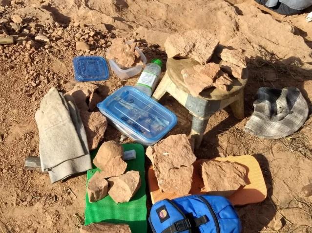 Fósseis são encontrados em rochas em Presidente Prudente — Foto: Stephanie Fonseca/G1