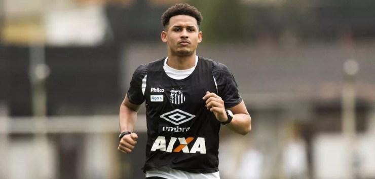 Felippe Cardoso treina no Santos — Foto: Ivan Storti/Santos FC