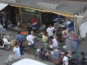 Animais são vendidos ilegalmente nas ruas de Manila, nas Filipinas (Foto: Sy Emerson/Divulgação)