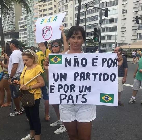 Solange Couto em manifestação anti-Dilma (Foto: Instagram / Reprodução)