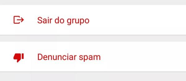 WhatsApp permite denunciar pessoas ou grupos como fontes de spam, ou mensagens em massa não solicitadas (Foto: Divulgação)