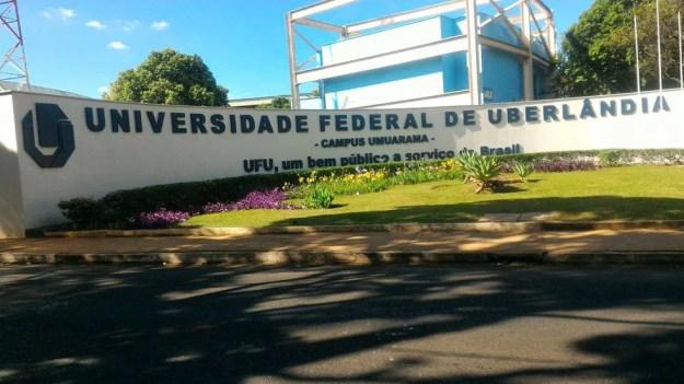 UFU estuda benefícios do grão há 17 anos (Foto: Bárbara Almeida/G1)