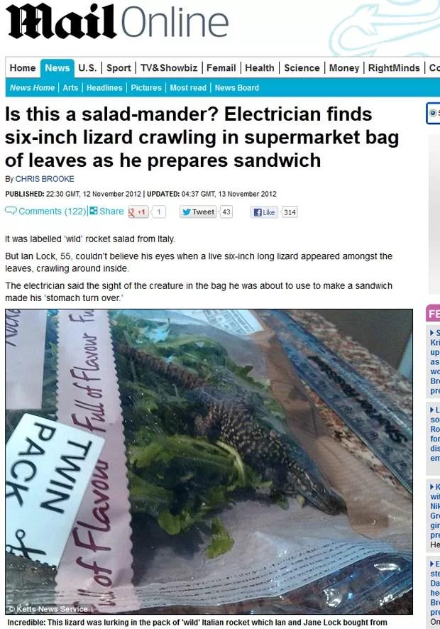 Ian Lock encontrou um lagarto vivo dentro de uma embalagem de salada. (Foto: Reprodução/Daily Mail)