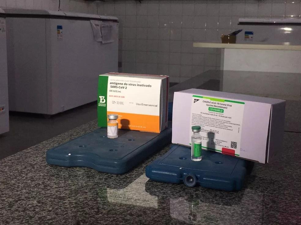 Doses da vacina Coronavac e da AstraZeneca/Oxford — Foto: Carla Salentim/TV Morena
