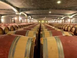 Barris da vinícola Chatêau de Smith Haut Laffite, perto do spa do vinho (Foto: Jean Pierre Muller/AFP)