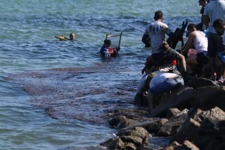 Voluntários recolheram óleo no mar, na praia do Janga, em Paulista, no Grande Recife, nesta quarta-feira (23) — Foto: Marlon Costa/Pernambuco Press