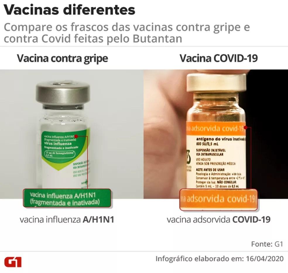Compara os frascos das vacinas  — Foto: Amanda Paes/Arte G1