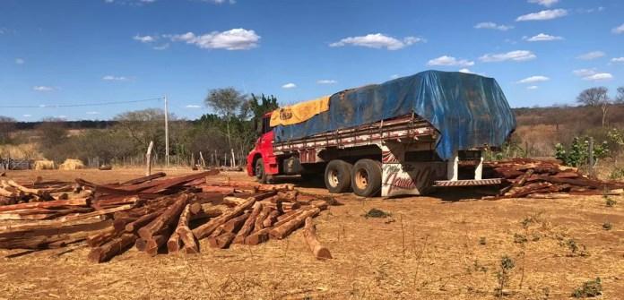Caminhões estavam sendo carregados com aroeira extraída ilegalmente em Morro Cabeça no Tempo — Foto: Divulgação/PRF
