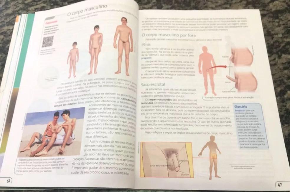 Livro de ciências que pais querem vetar tem ilustrações de pênis, em Ji-Paraná (Foto: Pâmela Fernandes/G1)