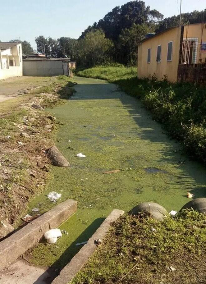 Moradores limpam vegetação de vala coberta de lama e esgoto em Mongaguá, SP — Foto: Reprodução/Facebook