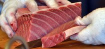 Resultado de imagen de atum mais caro do mundo