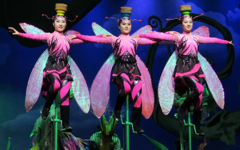 Acrobatas em números vigorosos e de grande habilidade em figurinos coloridos e cenários especiais (Foto: Alba Valéria Mendonça/ G1)