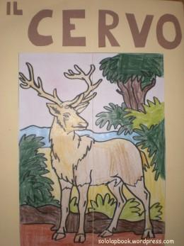 lapbook cervo