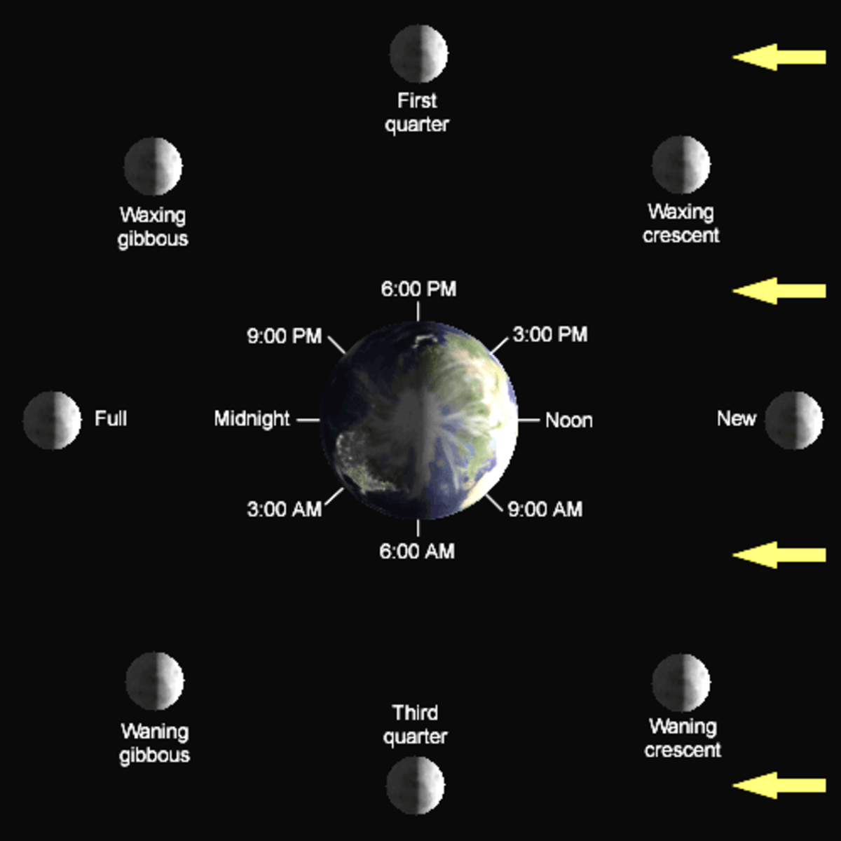 Investigate Phases Of The Moon Science Activity For