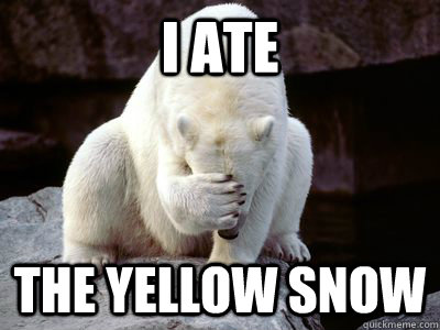Image result for yellow snow funny