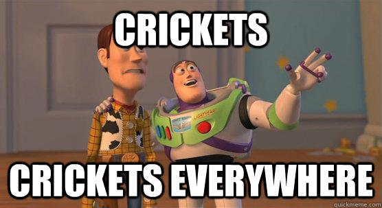 Image result for crickets meme
