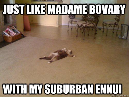 Bildergebnis für madame bovary meme