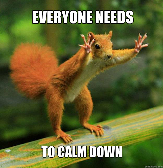 Image result for being calm meme
