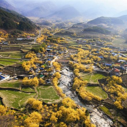 Sansuyu Village, South Korea