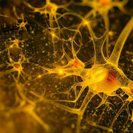 Why our brains may be 100 times more powerful than believed
