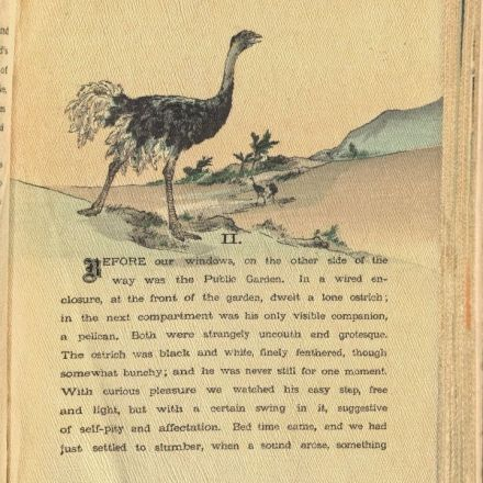 An Illustrated 19th-Century Japanese Travelogue of Egypt