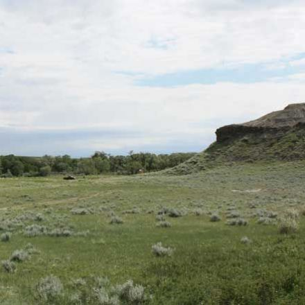 Centuries Old Pemmican-Making Camp Uncovered in Montana