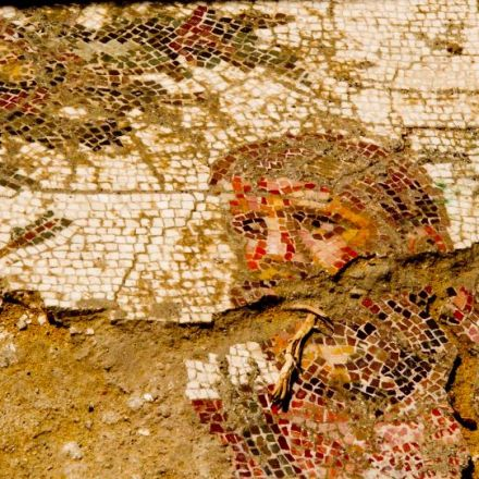 1,400-Square-Foot Roman Mosaic of Hercules's Labors Found in Cyprus