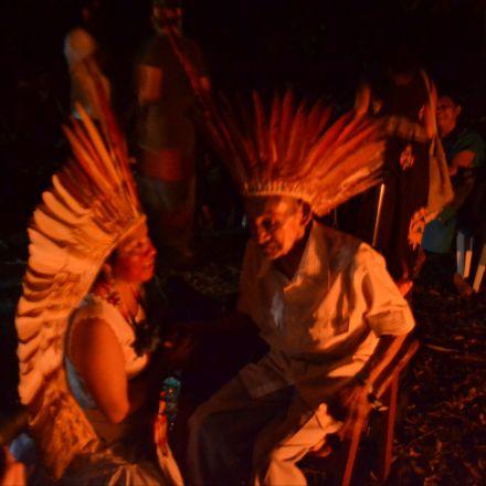Women Are Leading Amazon Ayahuasca Ceremonies for the First Time