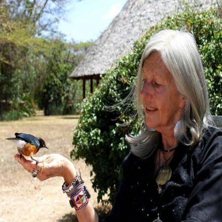 Renowned Conservationist Kuki Gallmann Shot in Kenya