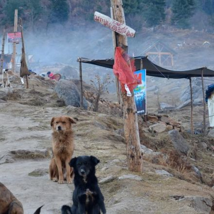 Death on the Hippie Trail