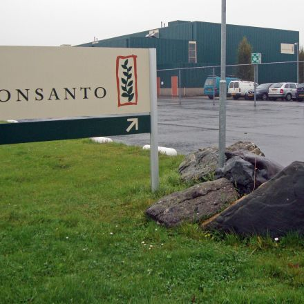 Monsanto accused in court of conducting an army of shills to crackdown on negative online comments