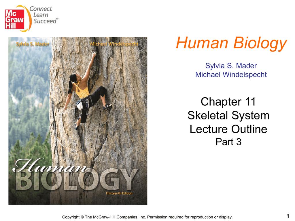 Chapt11 Lecture 13ed Pt 3