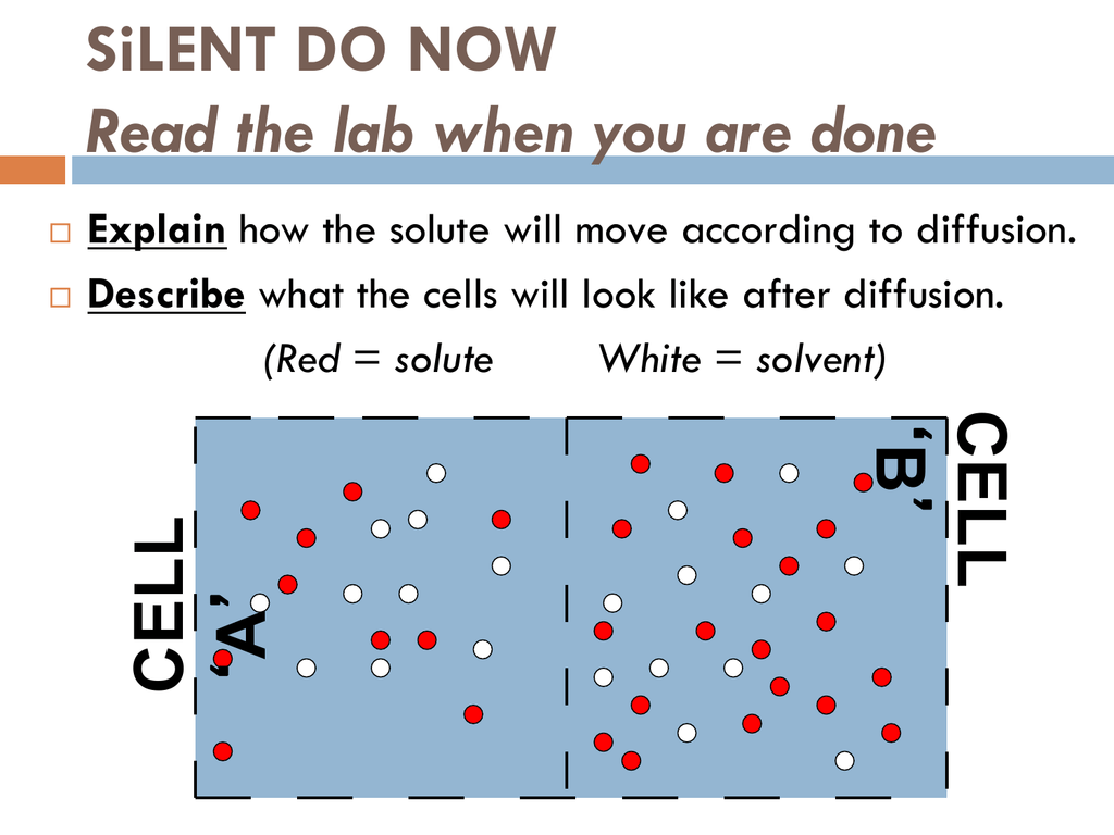 Cells 6 Osmosis