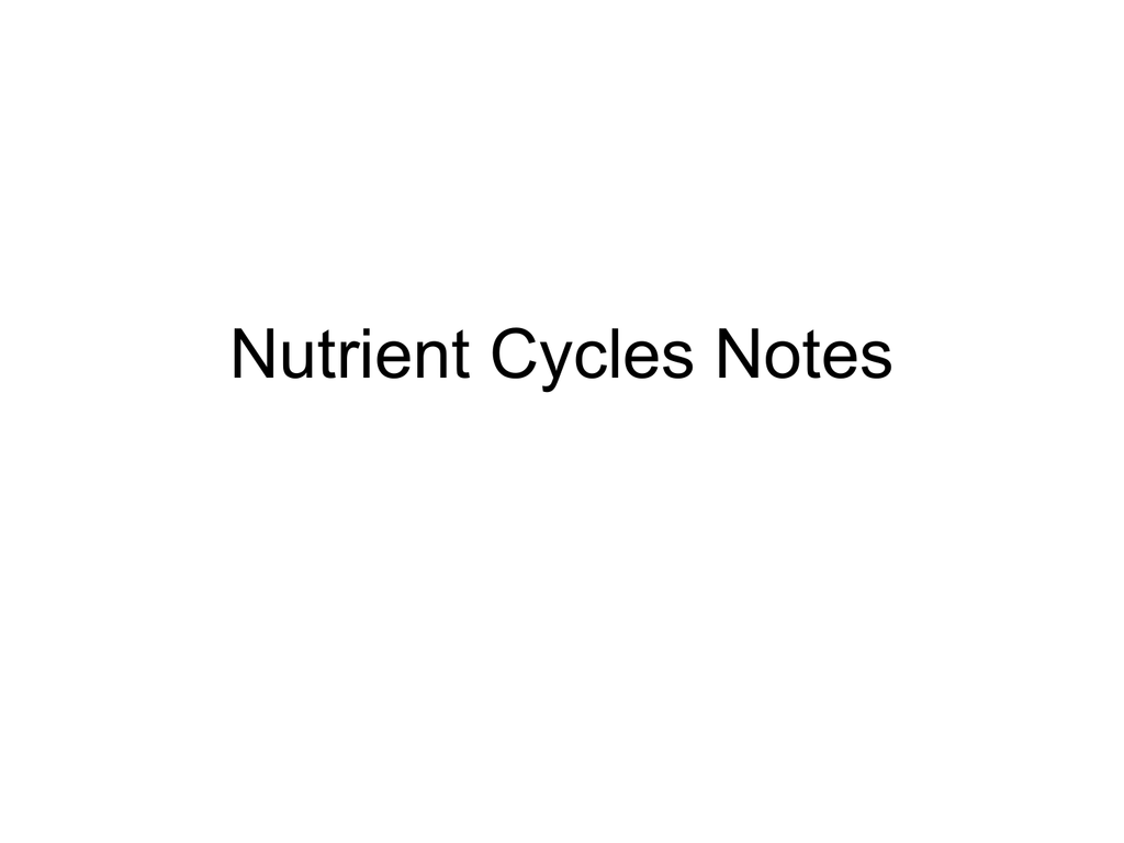 Cycles Worksheet Answers