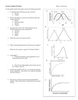 Studylib