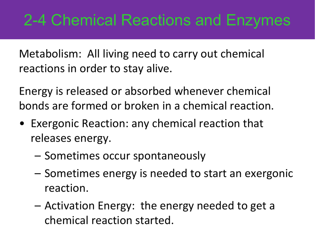 2 4 Chemical Reactions And Enzymes