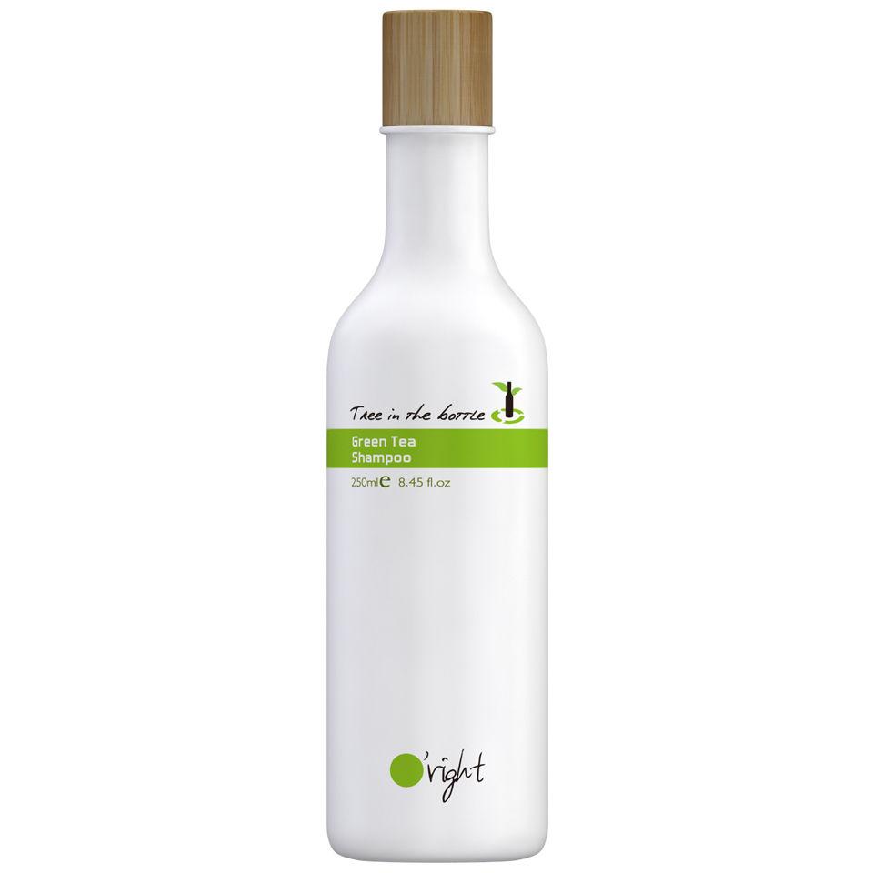 Oright Green Tea Shampoo Tree In The Bottle 250ml