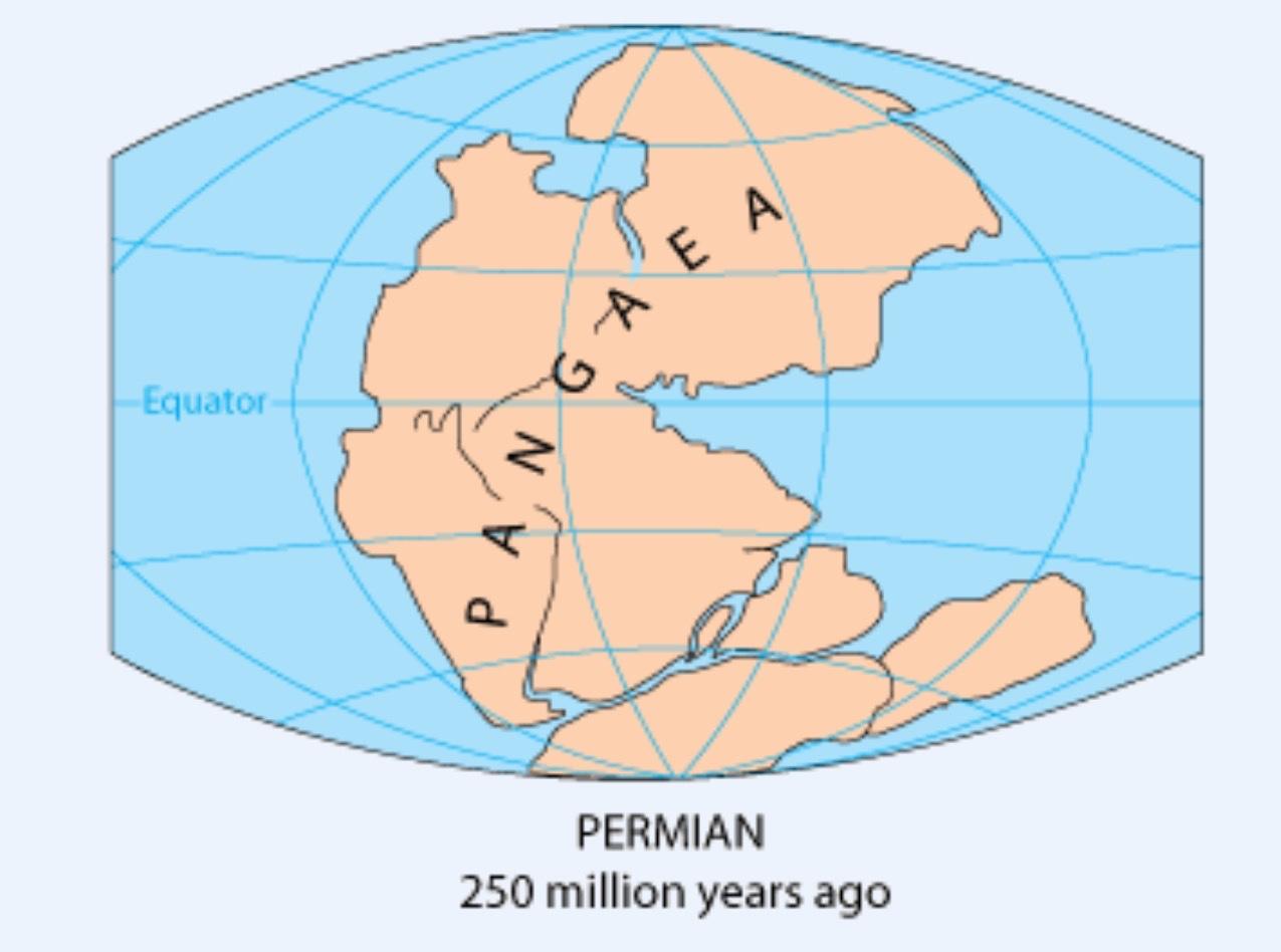 Paleozoic Permian