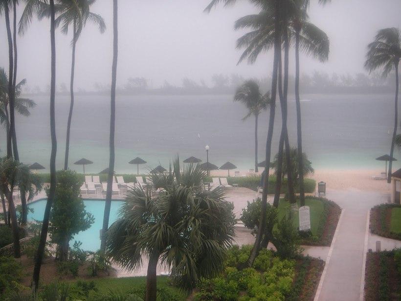 Scădere în greutate nassau bahamas, Pierderea in greutate icariin