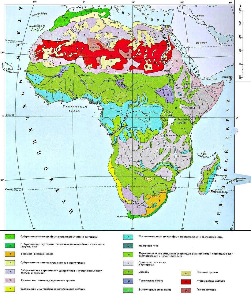 Почему в тропиках почва такого ярко-красного цвета