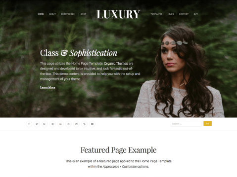 A WordPress theme for luxury brands, fashion and just plain classy sites.